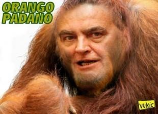 orango-padano